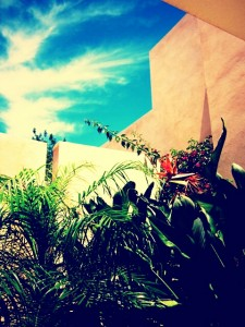 ibiza destination tropical sky view sunshine style