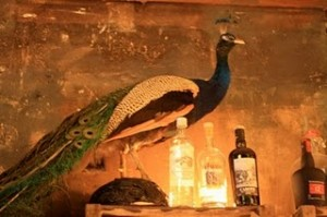 Paris France bar nightlife grazie taxidermy