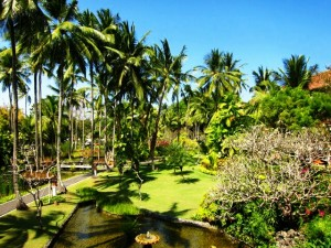 tropical gardens melia luxury hotel