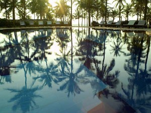 holiday village goa pool palmtrees