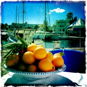 harbour satsumas fruit