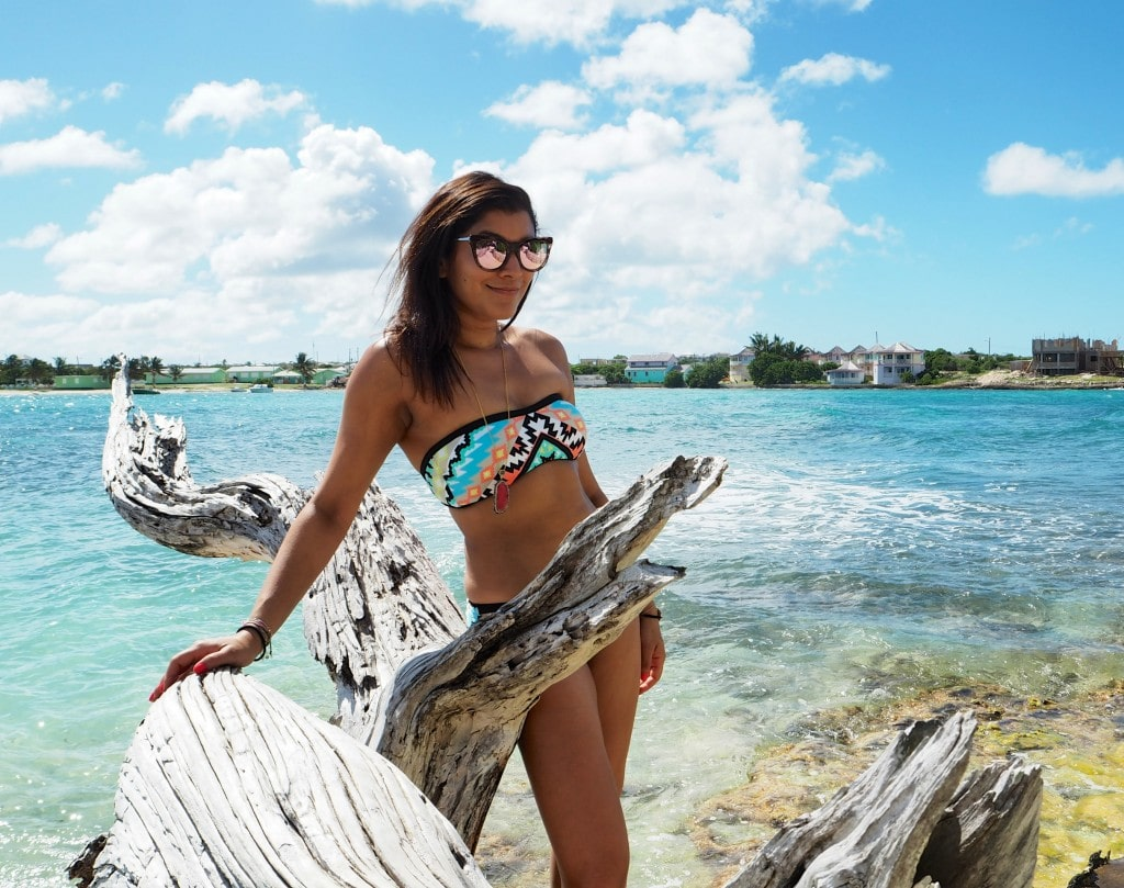 The Style Traveller Seafolly cocobay