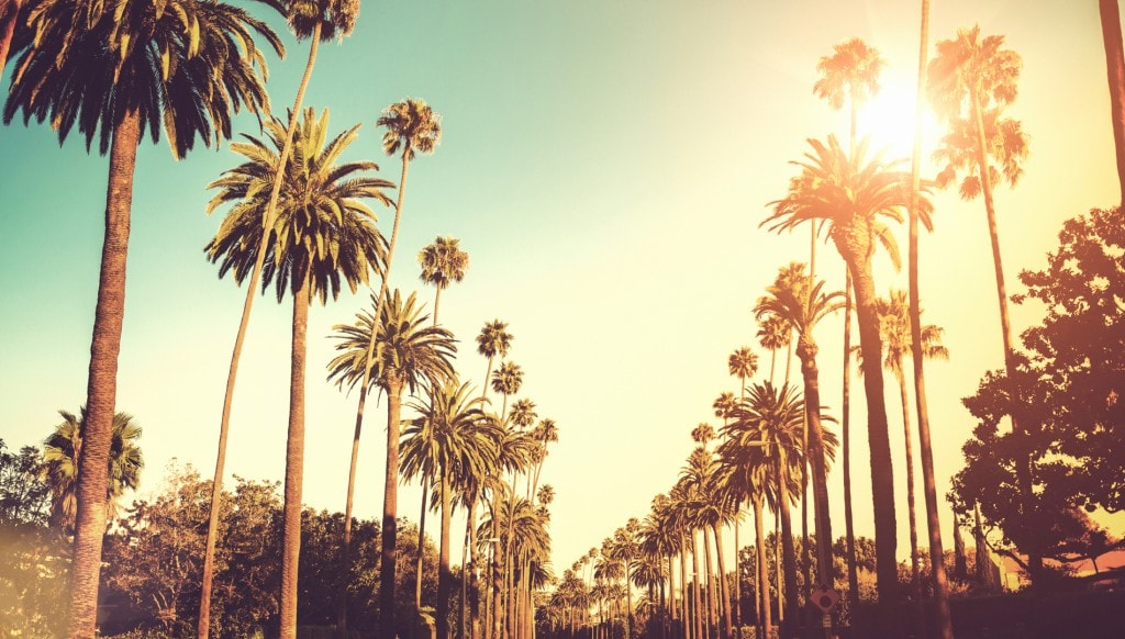 los_angeles California style traveller