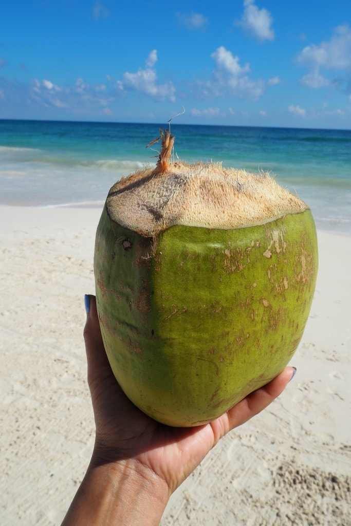 coconut water tulum