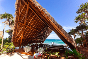 Papaya playa project where to eat and drink tulum