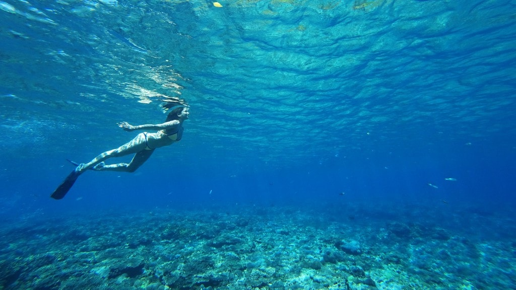 The style traveller mermaid diving