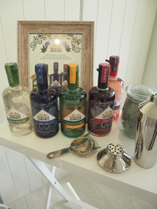 warner-edwards-gin-tasting-burghley