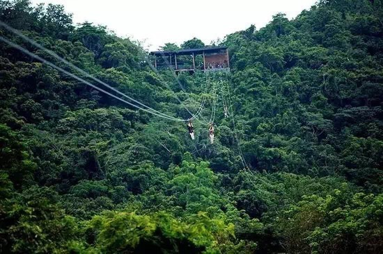 zip line forest hainan china