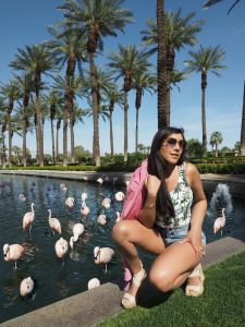 bonnie rakhit flamingos and jw marriot hotel palm springs