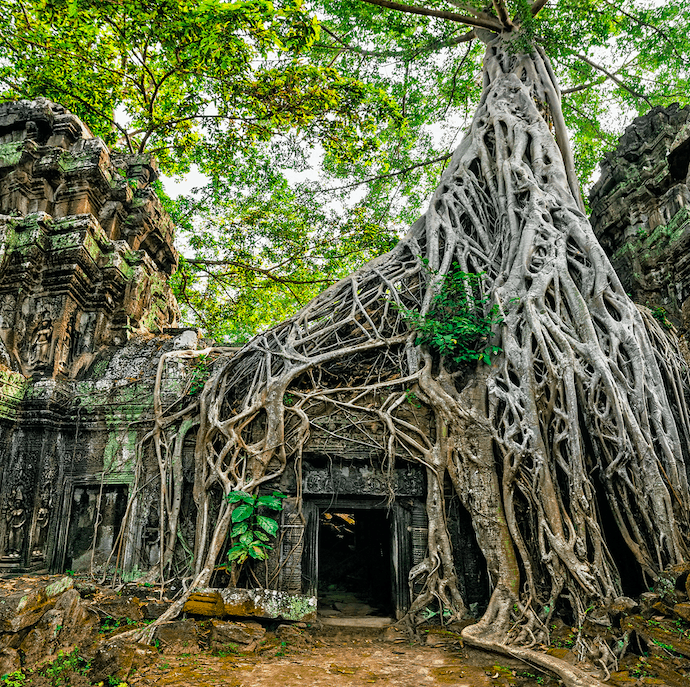 Angkor wat avani hotel cambodia best sites to visit tomb raider film location