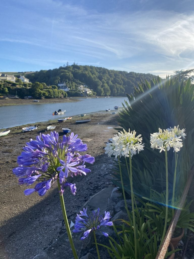 The Perfect UK Staycation & what to do in Devon