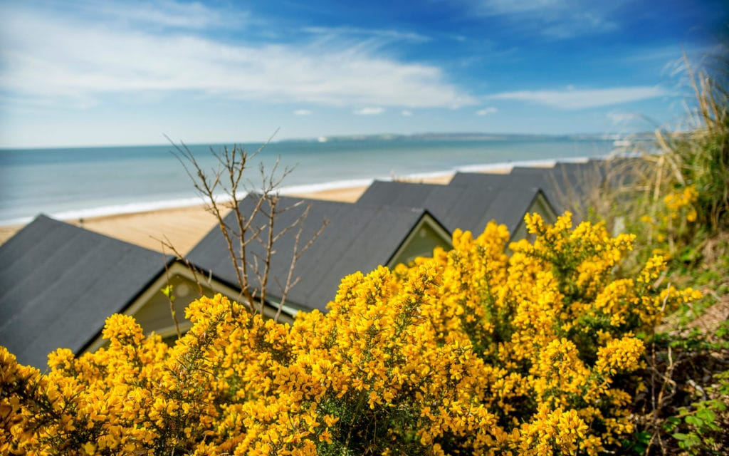 The Perfect UK Staycation Bournemouth beach lodges